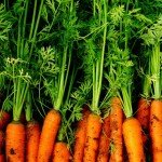 just the carrots