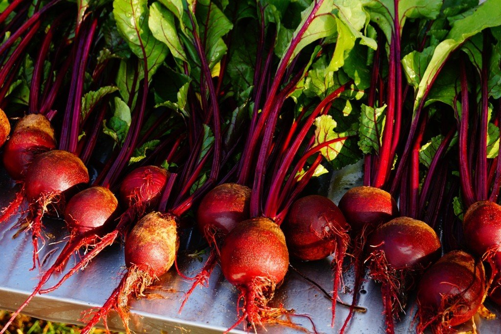 beets with their greens