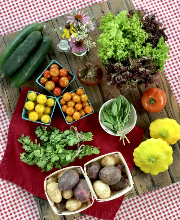 Perkins Summer CSA Large Share - Week 3