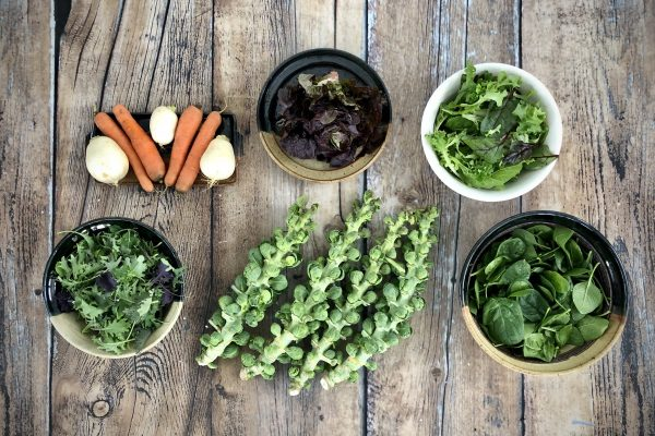 Fall CSA Week 7 Medium Share