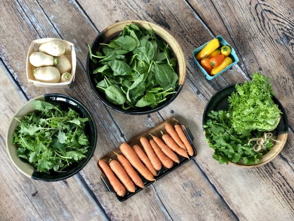 Fall CSA Week 1 Medium Share