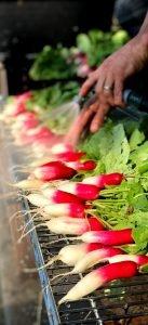 raw radish being washed