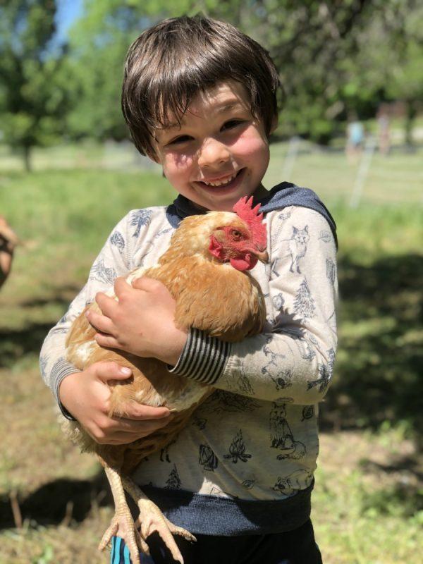 Arie holding chicken