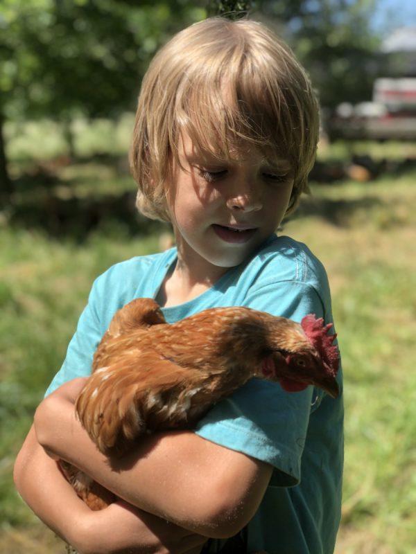 Asher holding chicken
