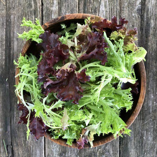 summer salad mix on farm stand