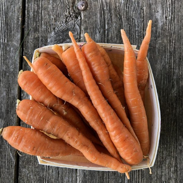 carrots in the farm stand