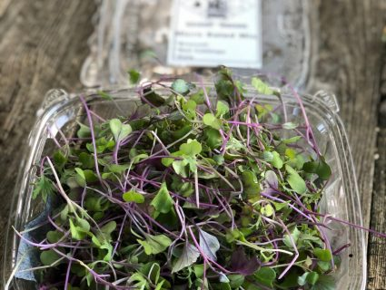 salad mix microgreens