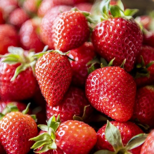 strawberries in farm stand