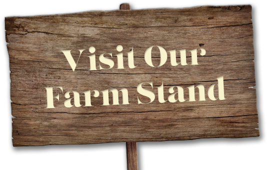 Visit Our Farm Stand