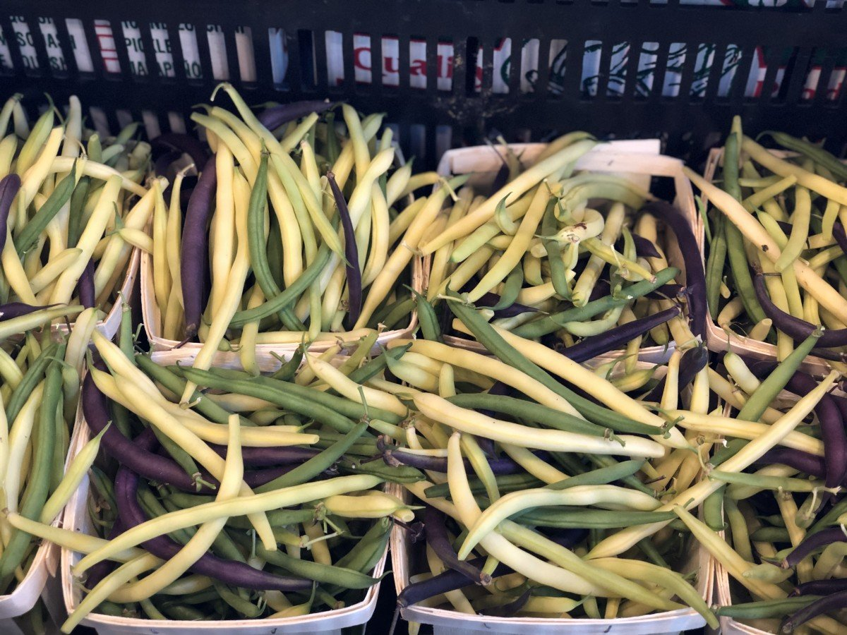 green beans on CSA line