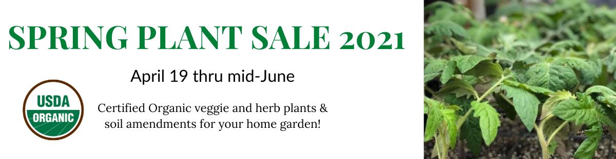 spring plant sale 2021 banner