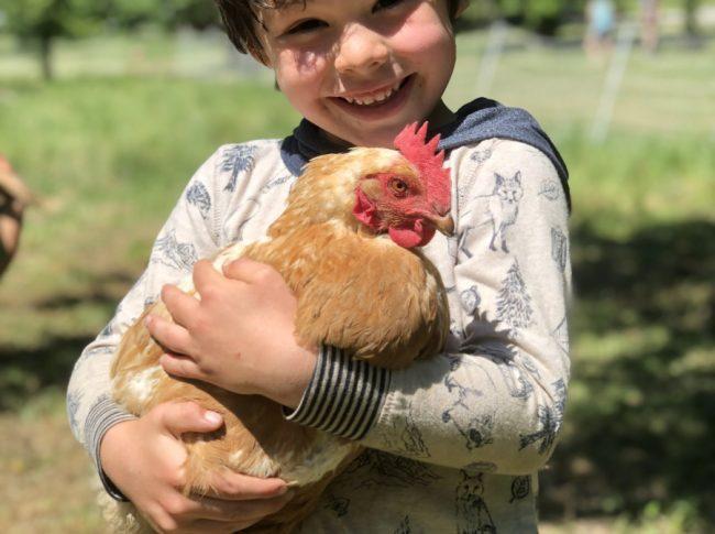 Arie holding chicken - eggs