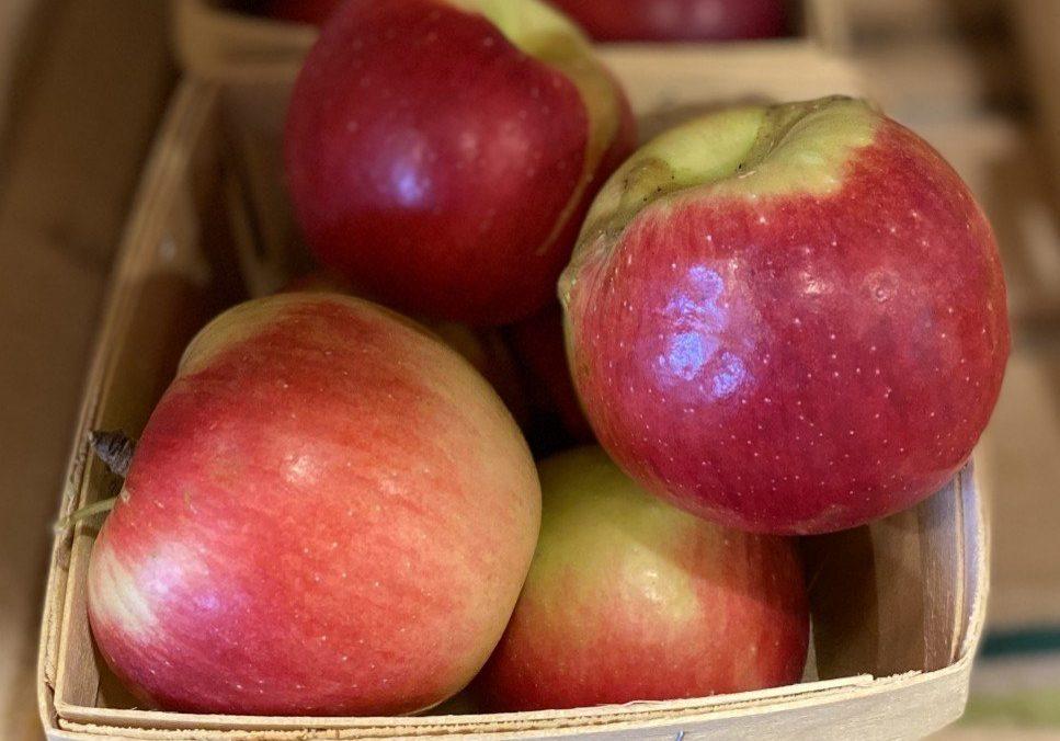 Dandee Apples