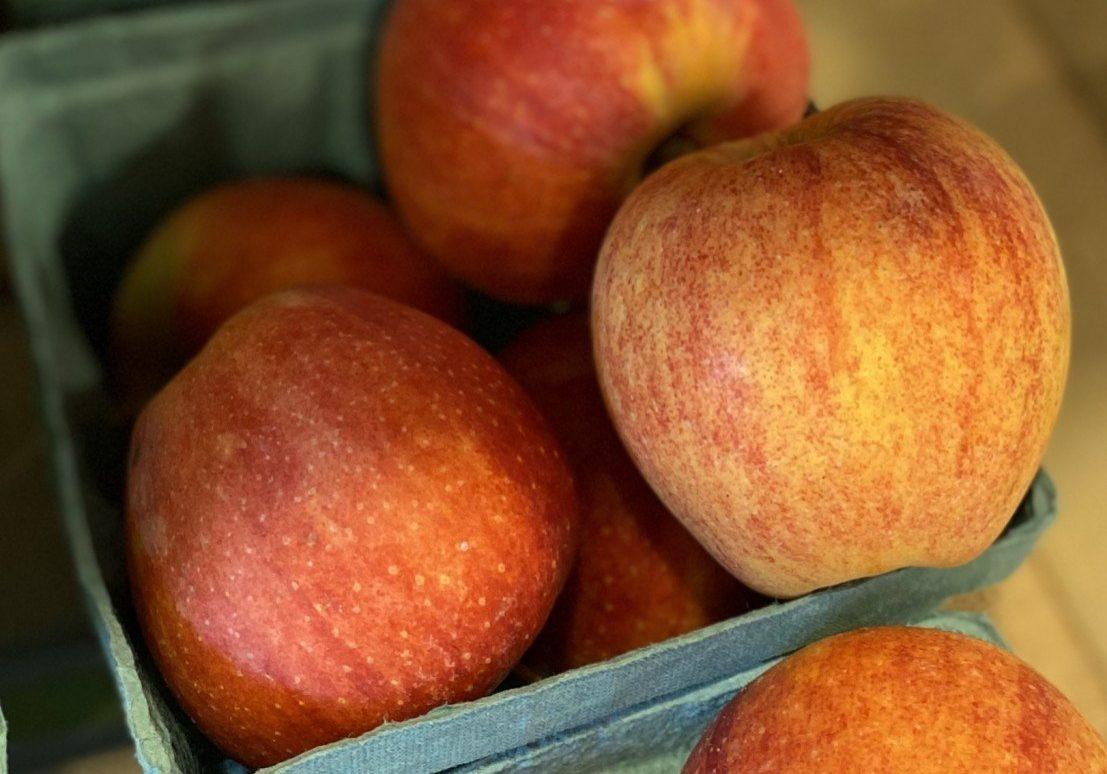 Gala apples quart
