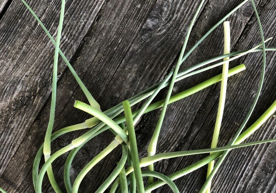 garlic scapes on farm stand