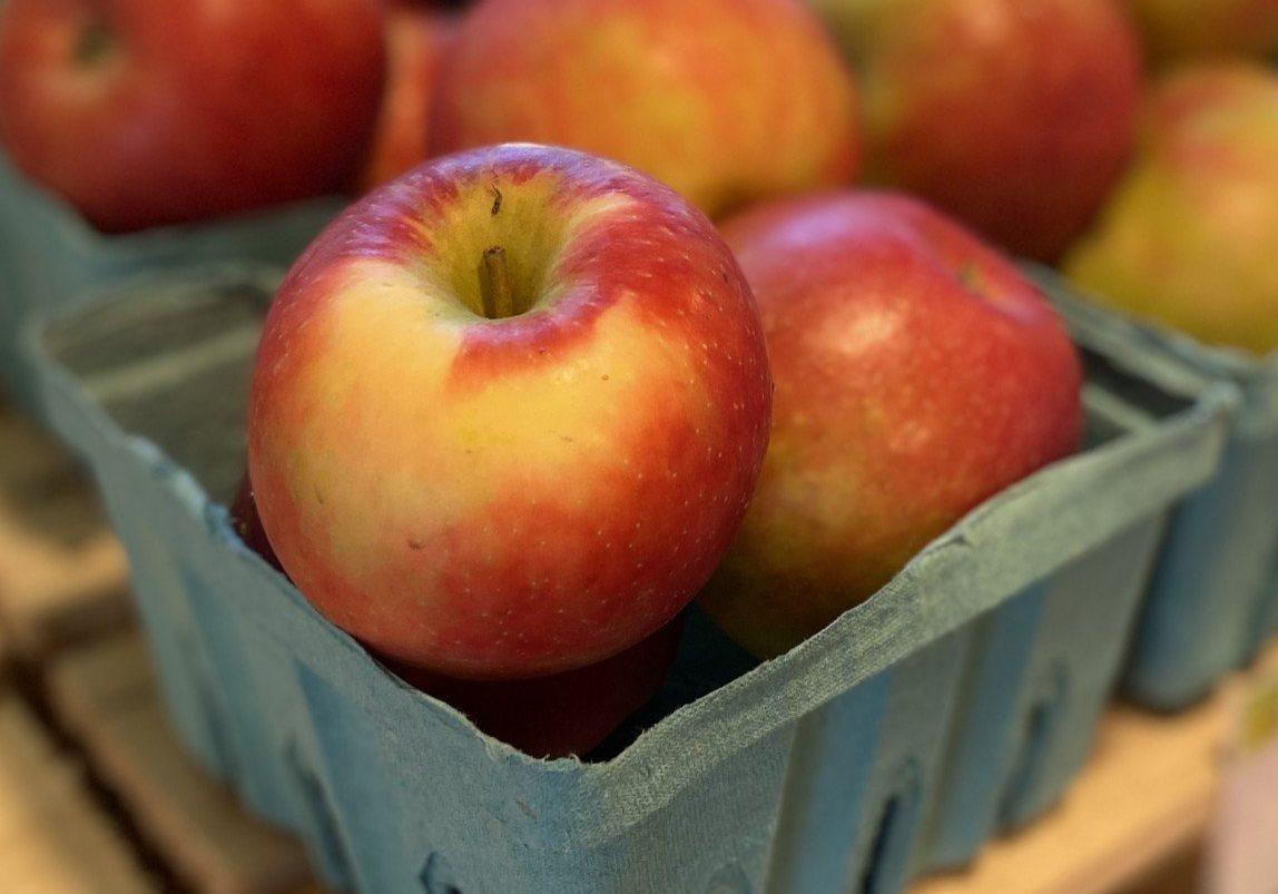 Honey Crisp apples quart