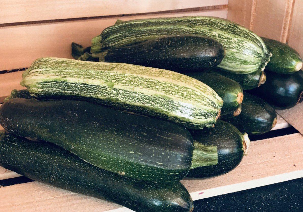 zucchini in farm stand