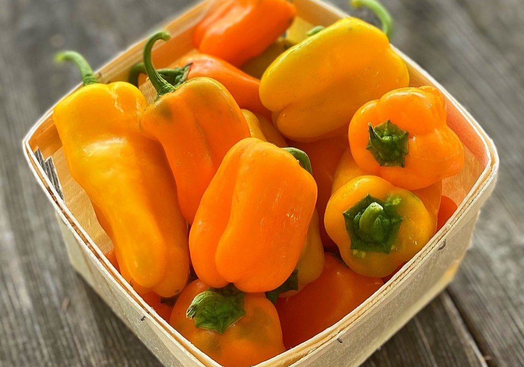 Lunchbox Peppers Quart
