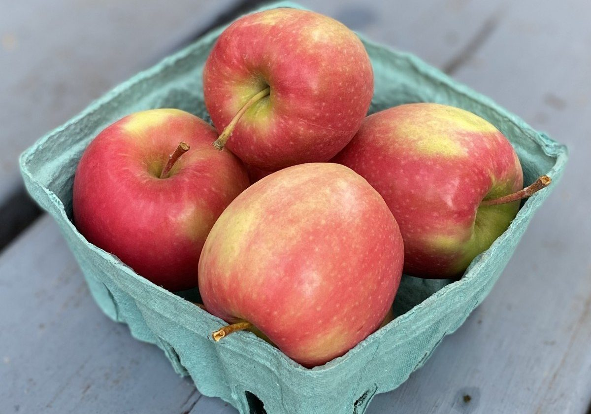 Pink Lady Apples In quart