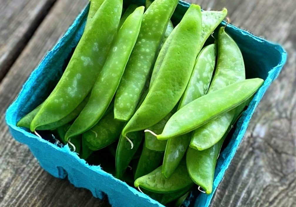 snap peas in pint